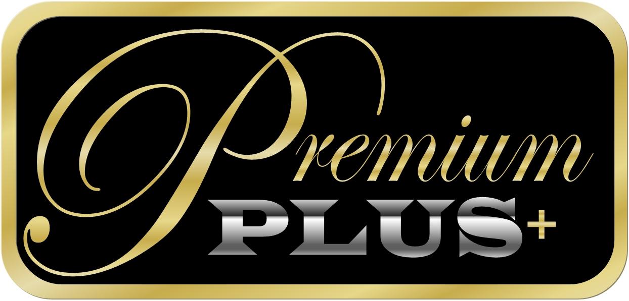 Paket premium seo backlink